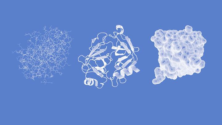 Enzyme Formen 2