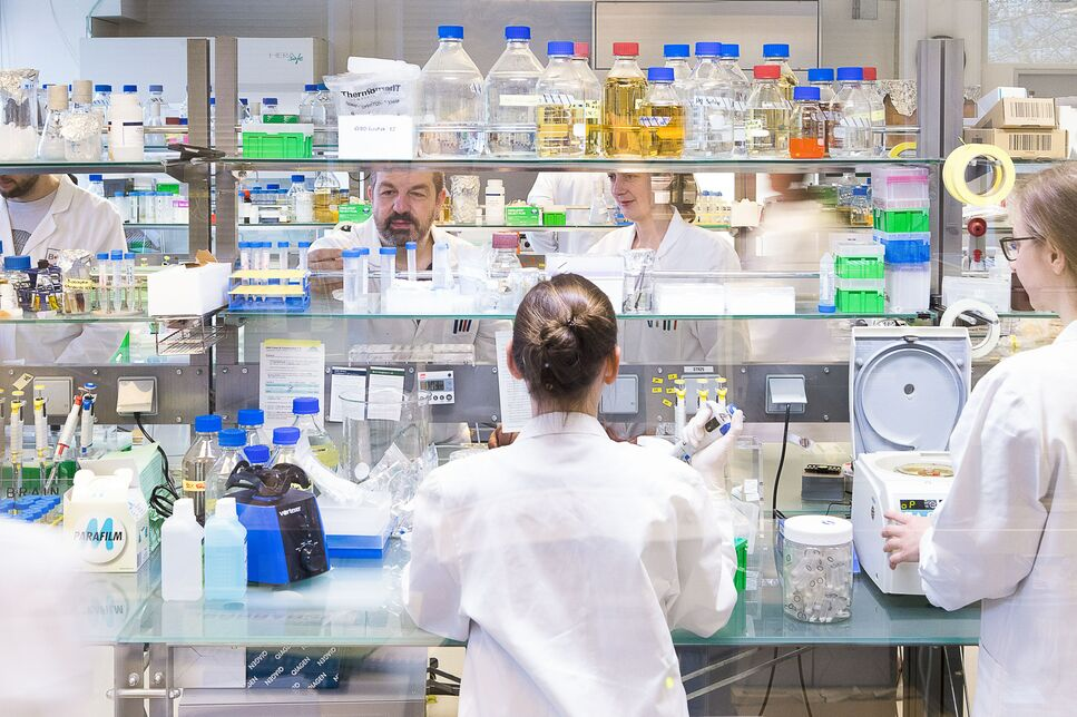 A view into BRAIN's molecular biology lab