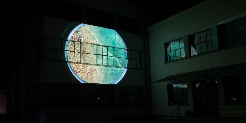 Light Art Projection Moving Mitosis by the artist Helga Griffiths