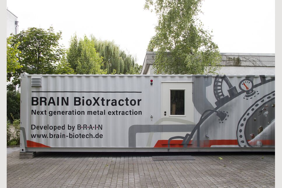 BRAIN BioXtractor