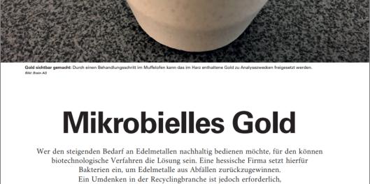 Mikrobielles Gold – Fachartikel im UmweltMagazin 10-11 | 2020 (VDI Fachmedien)