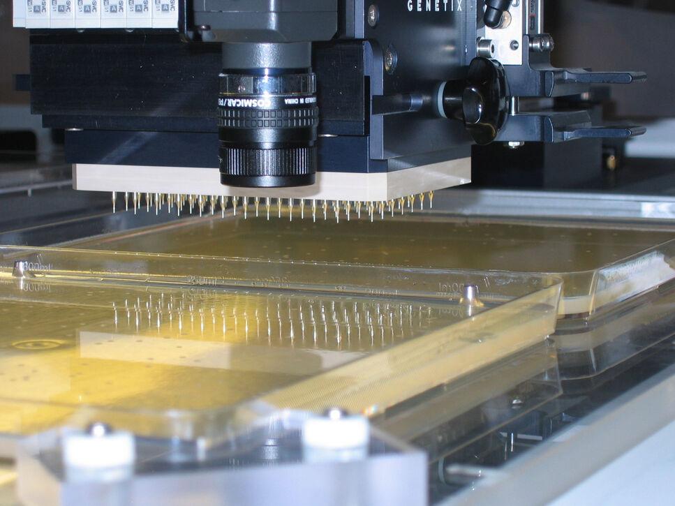 """Ein """"Picking und Spotting"""" Roboter ermöglicht die Handhabung einer großen Anzahl von Metagenom® Klonen."""
