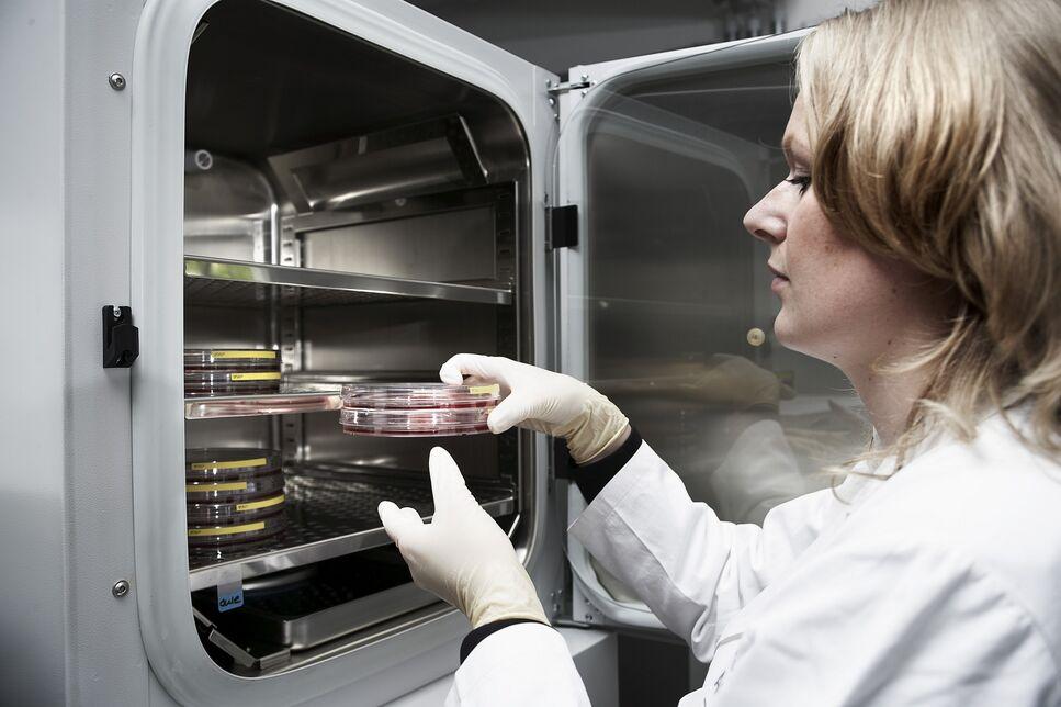 BRAIN suche nach bioaktiven Naturstoffen für innovative Kosmetika
