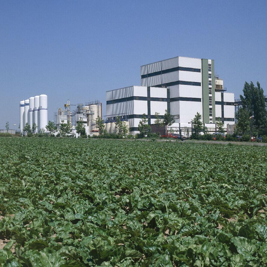 Südzucker AG: Produktionsanlage für ISOMALT und Palatinose™.