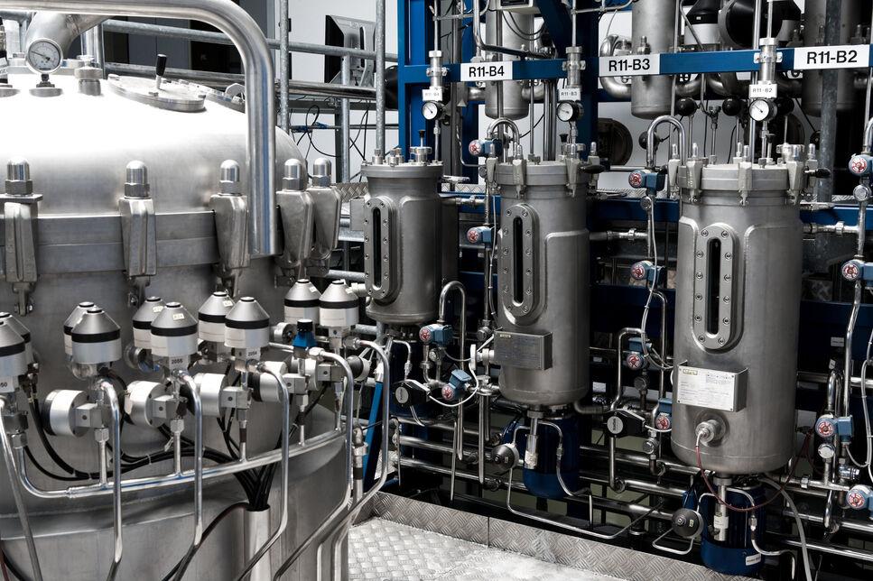 Biotechnologische Herstellung von Ölen aus nachwachsenden Rohstoffen oder industriellen Nebenströmen.