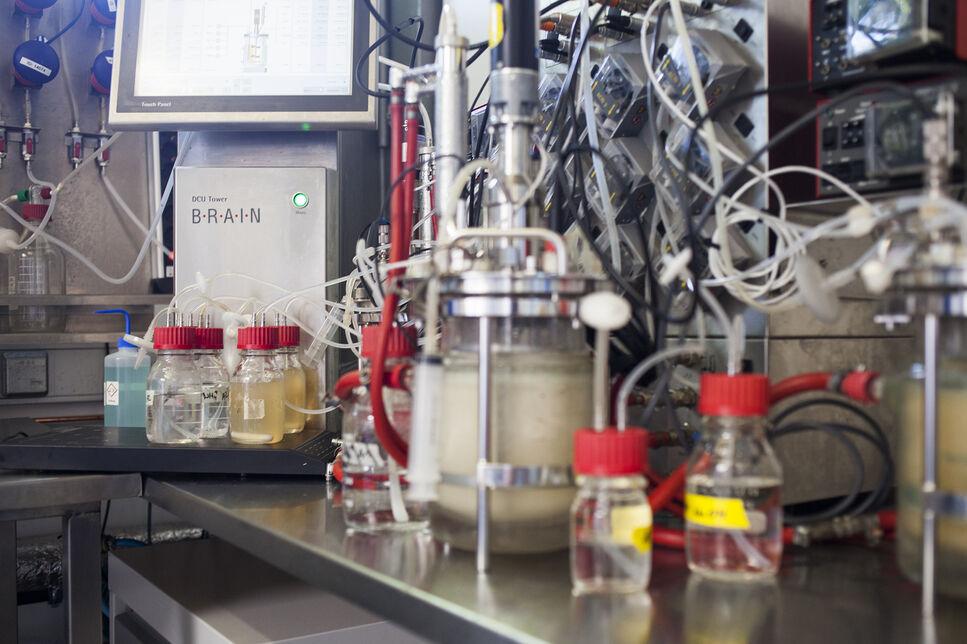 Mikrobielle Produktion von Enzymen für die Milchprodukteindustrie. Herstellungsoptimierung vom Laborverfahren bis zum hochvolumigen Bioproze