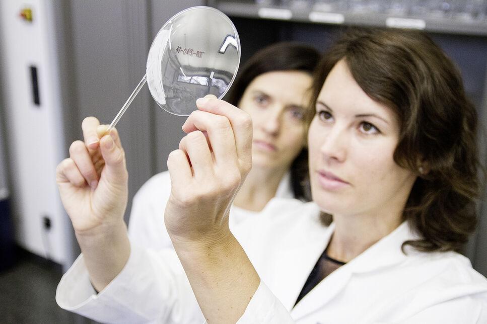 Wissenschaftlerinnen der BRAIN arbeiten an der Entwicklung neuartiger natürlicher Inhaltsstoffe für verschiedene Branchen.